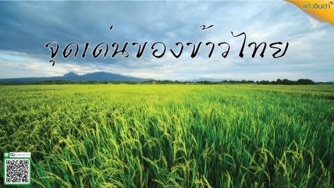 จุดเด่นของข้าวไทย